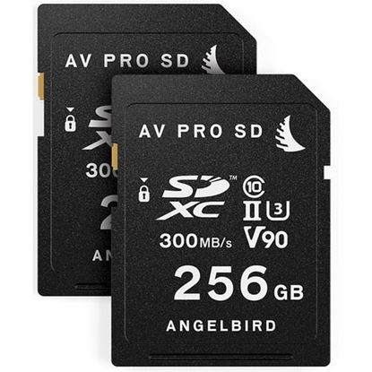 Picture of Angelbird Match Pack for Panasonic EVA1 256GB | 2 PACK
